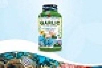 Omega 3 + Garlic Oil Extract