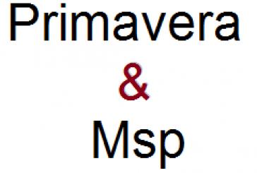آموزش Primavera & Msp