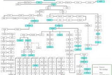 برای اولین بار عرضه و پشتیبانی نرم افزار مشاوره ژنتیک با قابلیت رسم شجره نامه اسکو مبنا