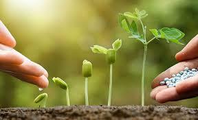 شرکت گلبن بهاربی رقیب در تولید کود کشاورزی