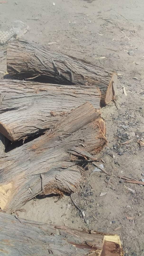 چوب هر مقدار موجود است کیلویی۶۰۰ت