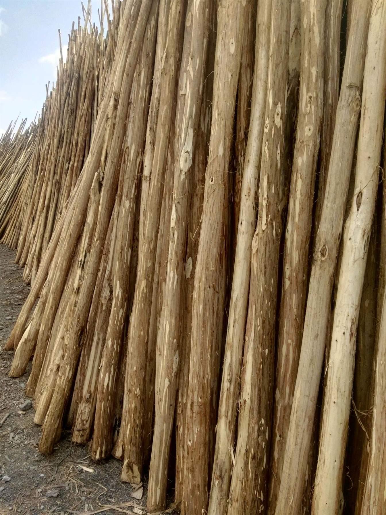 پخش عمده چوب گلخانه