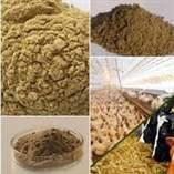 فروش انواع پودر ماهی، پودر گوشت، پودر ترکیبی