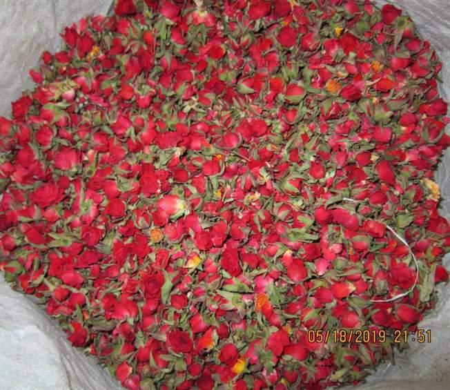 فروش غنچه و پر خشگ گل رز