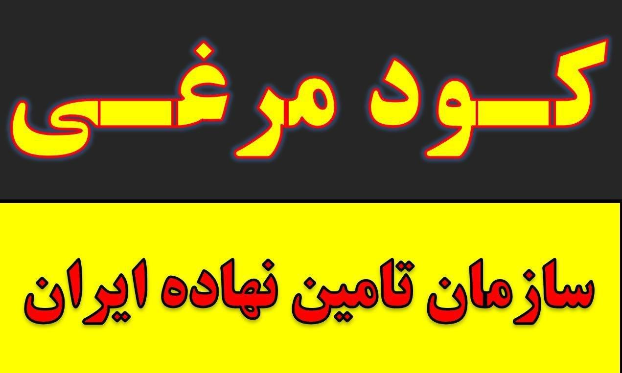 کود مرغ.پلت مرغی.کود حیوانی و شیمیایی خرید فروش مشهد