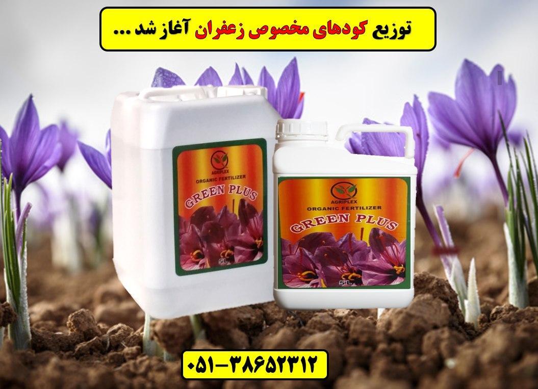 کود زعفران.saffron Fertilizer.قیمت کود زعفران.فروش کود زعفران بیرجند و قاین و سرایان