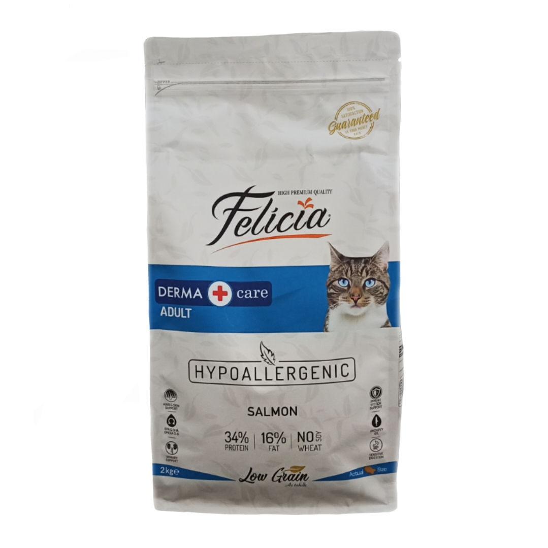 غذای ارزان برای گربه